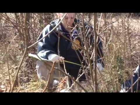 U.S. Army Criminal Investigation Command Recruiting Video