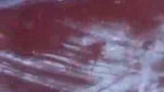 okolona exit 27 ghost prints 7/22/10