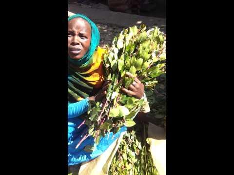 Khat trade in Harar town