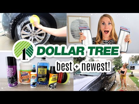 $1 DOLLAR TREE CLEANING SECRETS YOU HAVEN'T HEARD! (All New Products!)