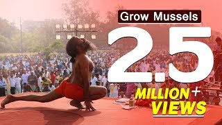 Grow Mussels Within 7 Days by Ayurvedic Medicines- Swami Ramdev thumbnail