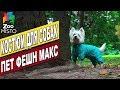 Костюм для собак Макс | Обзор одежды для собак | Max Pet fashion review