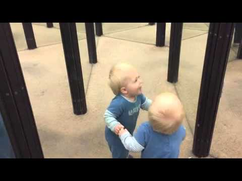 Little boy crashes into his reflection in mirror maze