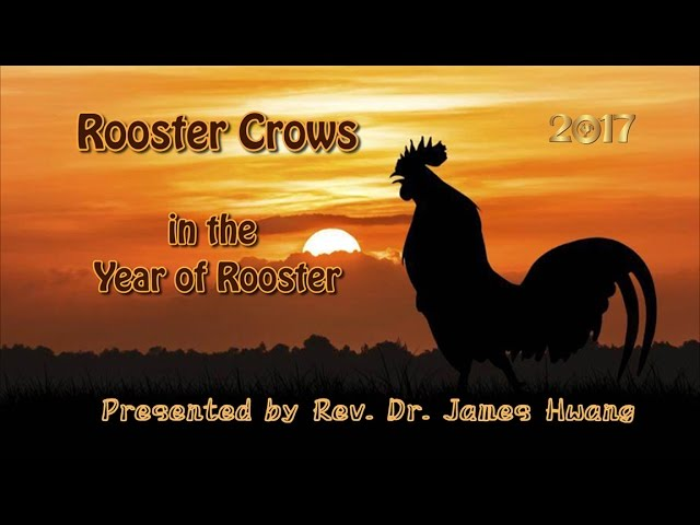 Rooster Crows in the Year of Rooster
