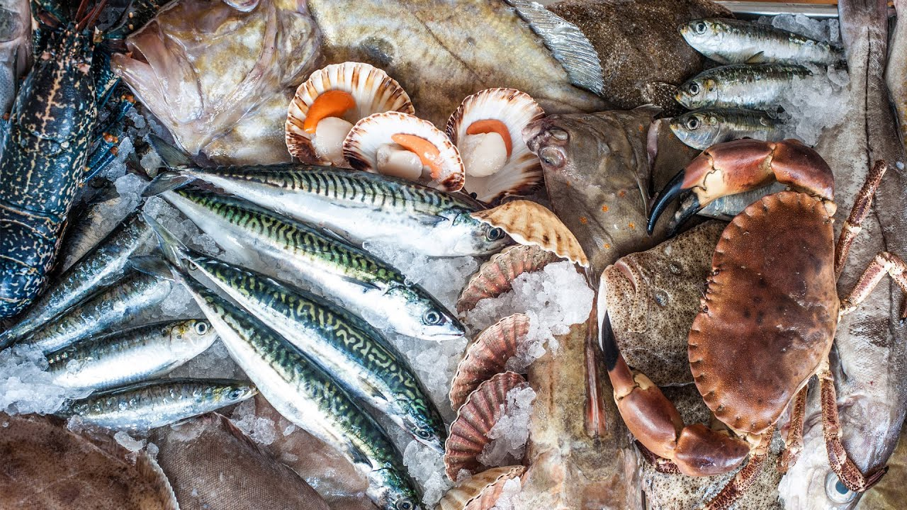 Buying fresh fish rick stein 39 s cookery school youtube for Rick s fish and pet