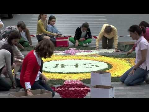 Alfombra floral corpus christi 2012 youtube for Precio de las alfombras persas