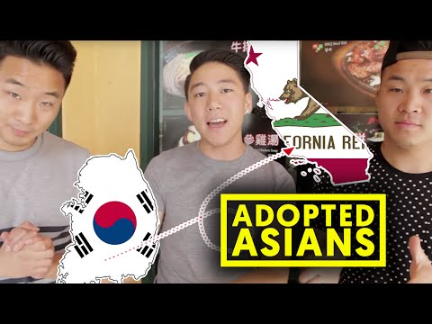 11 THINGS ABOUT ASIAN ADOPTEES w/ DanAKADan
