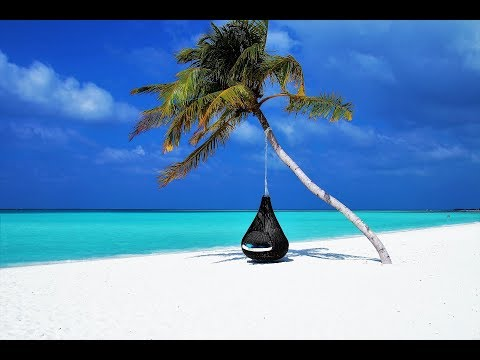 Summer Upbeat Background Music / Travel Music Instrumental - by Media M