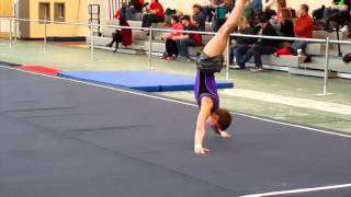 2016 IL State Boy's Gymnastics Championships - Charley Thompson