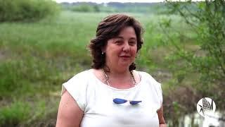 Agrotejo (Alexandra Fernandes) - Projeto Milho Amarelo - Apoio PRODER