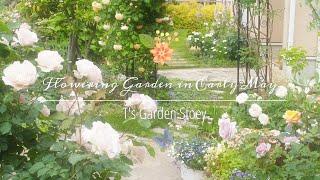 《花盛りの5月上旬の庭》たくさんの花が咲き誇る幸せいっぱいの庭《T's Gardenのガーデニング》