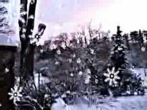 Elvis Presley In The Garden Lyrics Youtube