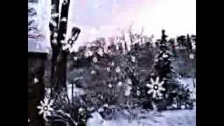 Elvis Presley-In The Garden+lyrics