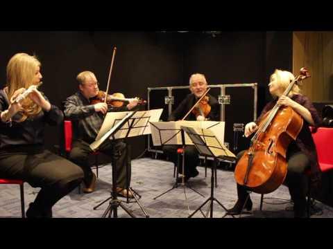 Mozart Quartet in D Major KV285 (1st Mvt) - Lisa Friend (Flute) & the Brodsky Quartet