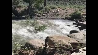 Bridge Breaks Apart as River Floods Due to Rapid Snowmelt