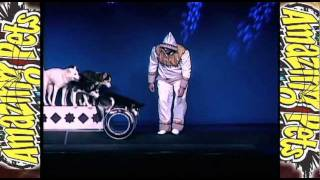 Amazing Pets Show Branson Missouri Valery Tsoraev with his Siberian Huskies