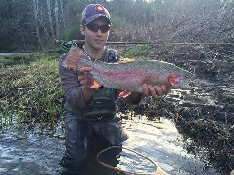 Opening Week of Trout Season PA 2017 - Pine Creek