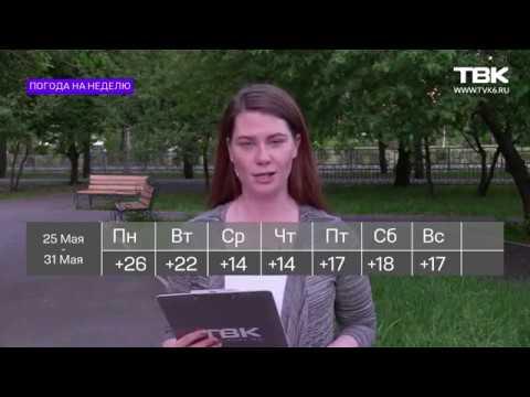 Прогноз погоды в Красноярске (25 - 31 мая 2020)