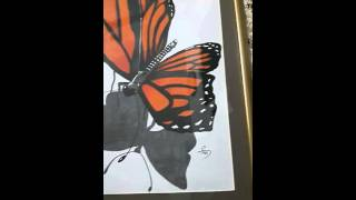 3d a Butterfly Drawing (saeed 0096899682662) Oman