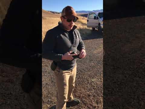 Skill analysis pistol Lewis Clark state college
