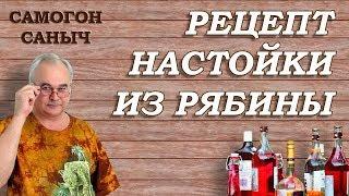 Настойка из рябины / Рецепты настоек / Самогон Саныч