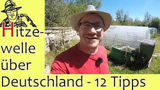 Hitzewelle über Deutschland - 12 heiße Tipps für eure Pflanzen und für euch 😲