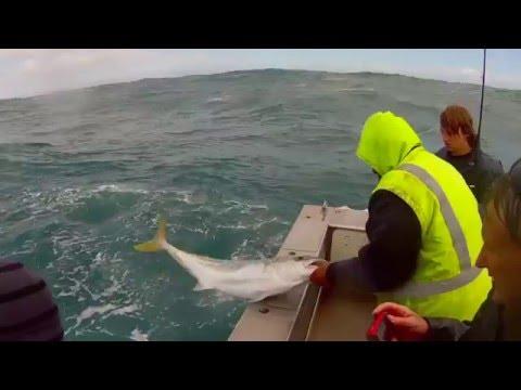 Fishing Ranfurly Banks, New Zealand, October 2013