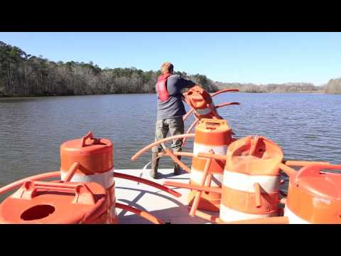 Alabama's State Public Fishing Lakes Now Open
