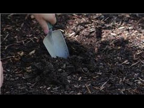 Landscaping : How to Install Landscape Lights - YouTube