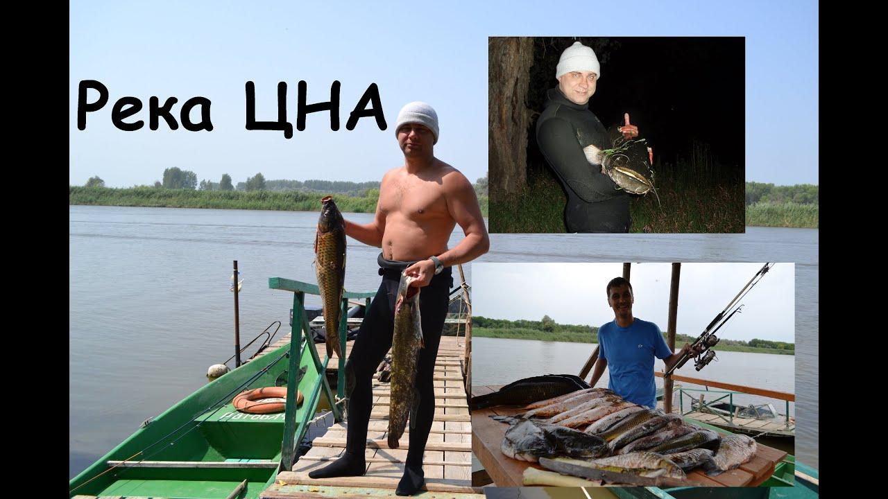 сайты о рыбалке в тамбове