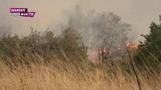 Πυρκαγιά στο δρόμο προς Δοϊράνη και κοντά σε πάρκο ανεμογεννητριών-Eidisis.gr webTV