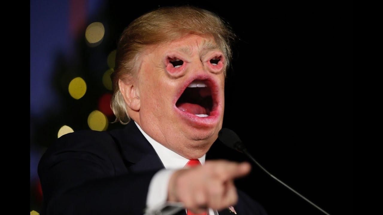 прикольные картинки дональд трамп катом