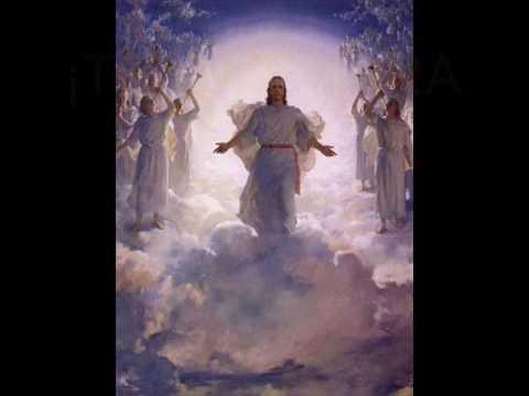 Puñetas Para Jesus (Handjobs for jesus-Goldfinger) mp3