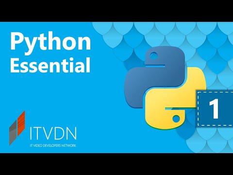 Python Essential. Урок 1. Введение в ООП Python