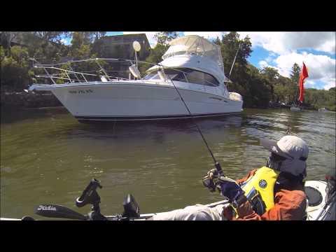 Darwin's Fishing Diary - Oatley Bay To Como Bridge 24-11-2013
