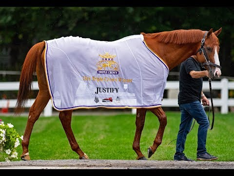 Justify - Racing.com Feature