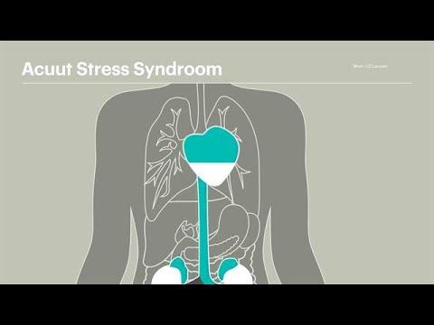 Acuut Stress Syndroom: dit gebeurt er in het lichaam - RTL NIEUWS