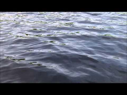 Lyon's Lake- Fly Fishing Manitoba - Still Water Trout Fishing