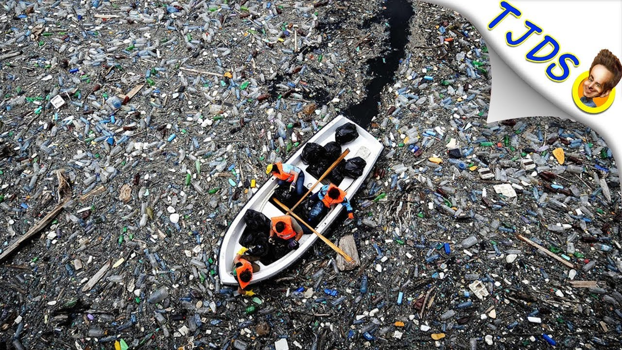 be the solution to ocean pollution Quick and easy things you can do to reduce water pollution and runoff.
