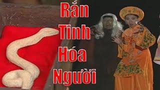 Yêu Tinh Rắn Hóa Người - Phim Cổ Tích Việt Nam Hay Nhất, Truyện Cổ Tích Xưa Ơi Là Xưa