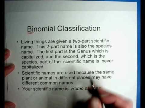 Biology #9 - Part 2 -Taxonomy of Organisms.wmv