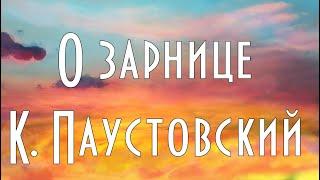 ''Про зірниці'' К. Паустовський, з повісті Золота роза Мультфільм зі змістом, аудіокнига на ніч