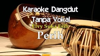 Karaoke Elvy Sukaesih - Perih