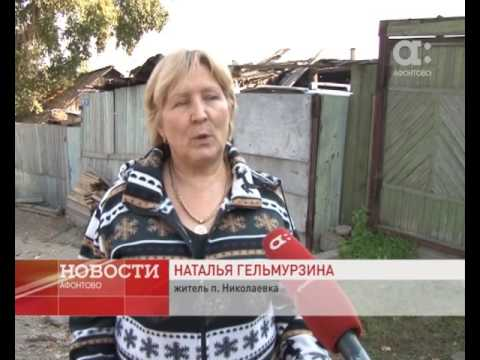 Миллион рублей за сотку: землю в Николаевке оценили независимые эксперты