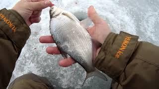 Хорошая погода чтобы потягать РЫБКУ Рыбалка в Воронеже на водохранилище 2021