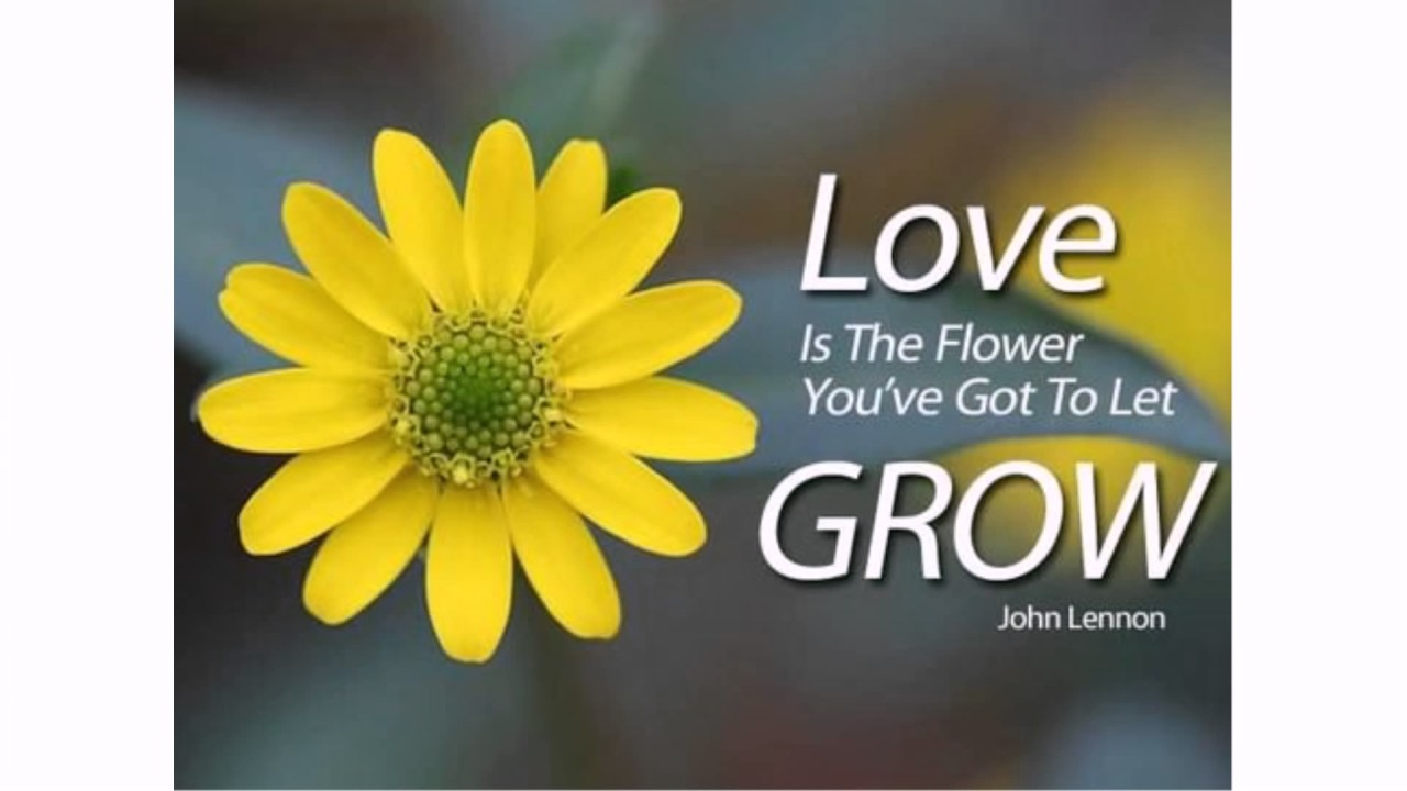 Flower Quotes Youtube