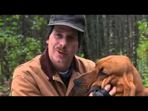 Best In Show (2000 Film)- Whadya Smell?