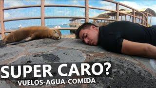 Cuánto CUESTA viajar a las Islas Galápagos?