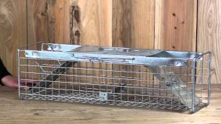 Havahart Double Door Cage Trap - 1030