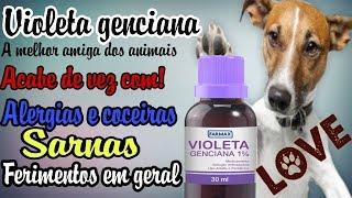O melhor produto  para alergias e coceiras em cães.(Baratinho)